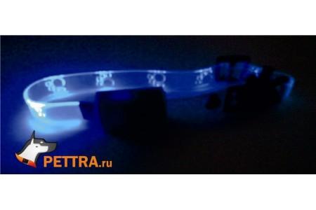 Светящийся прозрачный ошейник 10мм для кошек