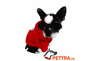 Очки для собак Doggles ILS X-Small