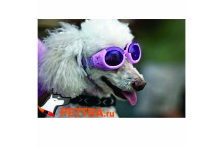 Очки для собак Doggles ILS Medium
